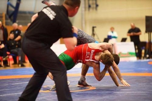 Сборная Могилевской области заняла третье командное место на чемпионате Беларуси по греко-римской борьбе