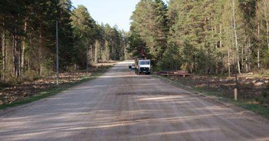 Более 14 км лесных дорог построено в Могилевской области за минувший год
