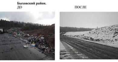 Более 600 нарушений природоохранного законодательства выявлено в Могилевской области в январе