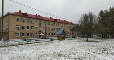 Инспекцией надзора и профилактики Быховского РОЧС проведен мониторинг