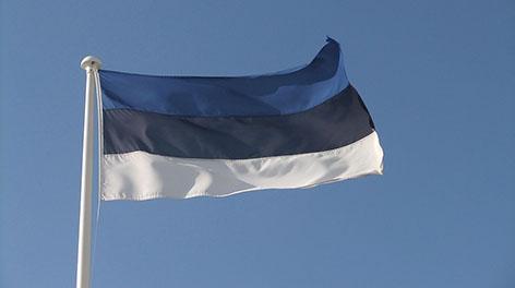 Транспорт, логистика, туризм, банки - Лукашенко назвал перспективные сферы сотрудничества с Эстонией