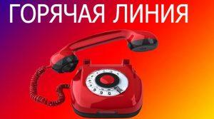 В Могилевской области с августа изменился график работы «горячей линии» по вопросам профилактики коронавирусной инфекции