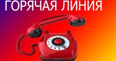 Помощь пожилым гражданам и инвалидам. В Быховском районе организована работа «горячей линии»