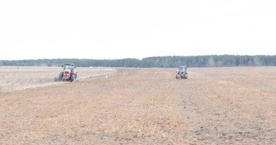 В хозяйствах Быховского района уже посеяно 70% ранних яровых зерновых культур