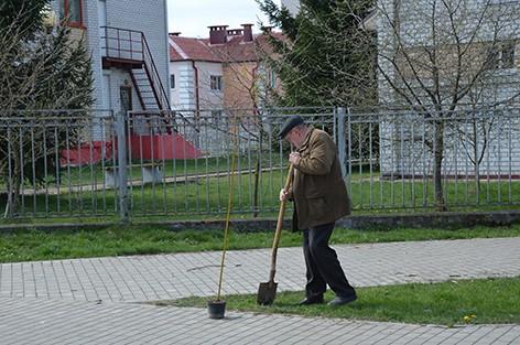 На Быховщине прошел республиканский субботник (фото)