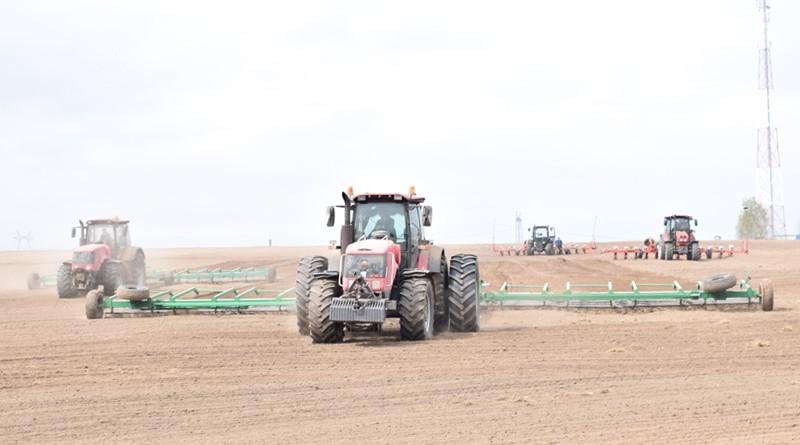 Хозяйства Быховщины скооперировались для того, чтобы оперативно провести сев кукурузы на зерно