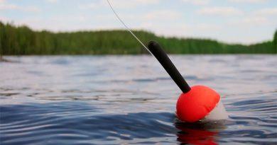 На заметку рыболовам-любителям