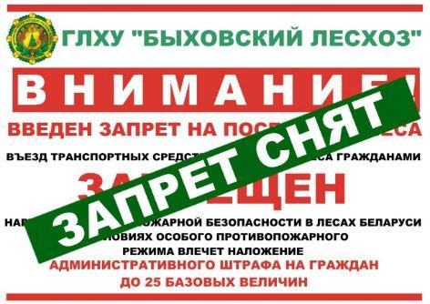 В Быховском районе снят запрет на посещение лесов