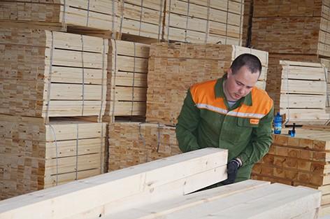 Новый сушильный комплекс введен в эксплуатацию ГЛХУ «Быховский лесхоз»
