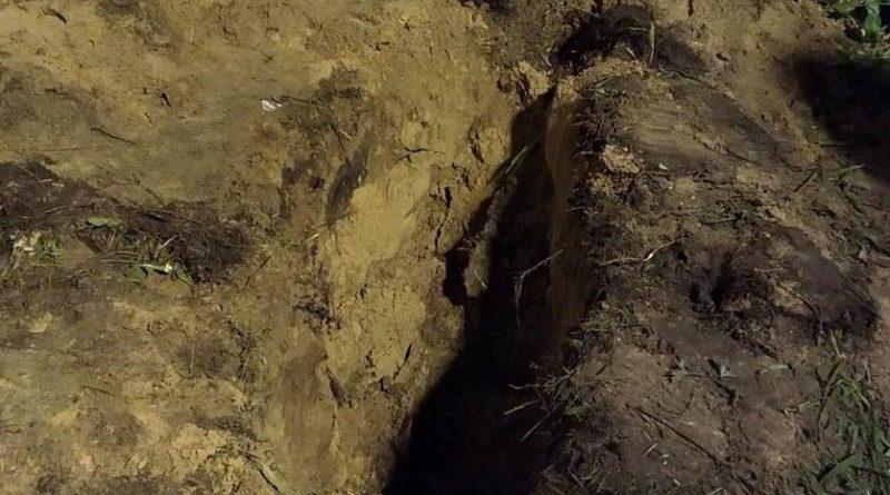 Двое жителей Быховского района убили и закопали мужчину, с которым выпивали