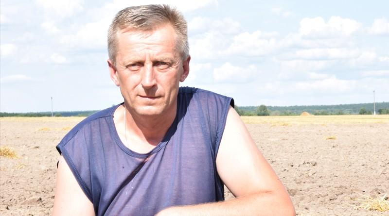 ОАО «Новобыховский» завершает уборку зерновых и зернобобовых культур
