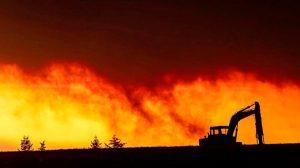 Жертвами лесных пожаров в США стали уже 23 человека (фото)