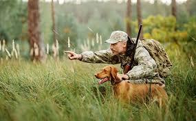 Правила безопасности на охоте