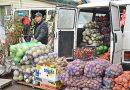 Сельскохозяйственная ярмарка прошла в Быхове (фото)