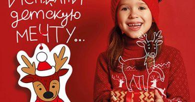 Благотворительная кампания «Елка желаний» проходит на Быховщине