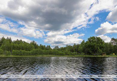 Дожди и грозы ожидаются в Беларуси 10 июня